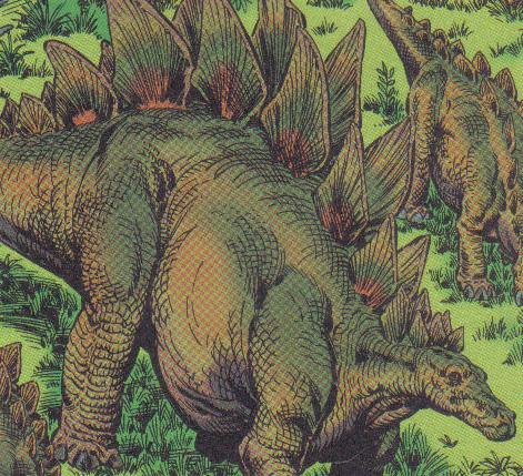 Stegosaurus stenops (?) (CB-Topps)