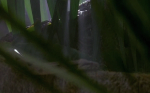 Analysis of the cinematography of Jurassic Park Essay Sample