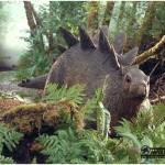 Stegosaurus_baby_2
