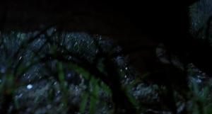 Juvenile Dilophosaurus - Isla Nublar (S/F) / (S/F-T/G)