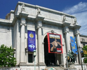 American Museum of Natural History (C/N)